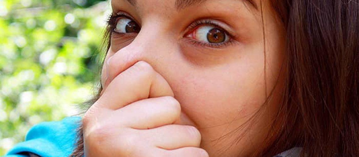 oralbacteria